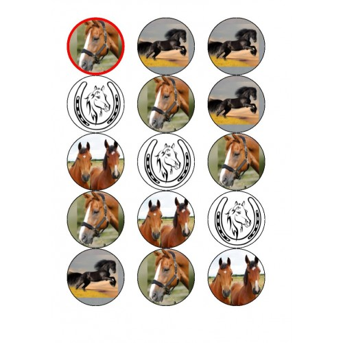 Cupcake Toppers Horse/ Equestrian Edible Pictures
