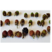 Blackberry Fruit Mould Set of 9 (Small) Botanically Correct Products By Robert Haynes