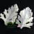 Dusty Miller Medium Leaf Veiner By Simply Nature Botanically Correct Products®