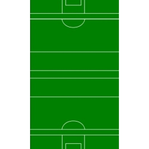 Football Pitch Edible Image Birthdays/Anniversary