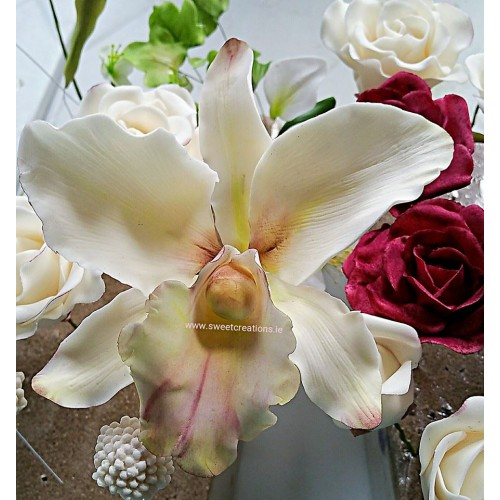 Sugar Orchid Flowers